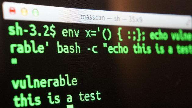 ejemplo código bash scripting