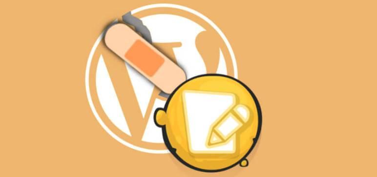 parche para wordpress